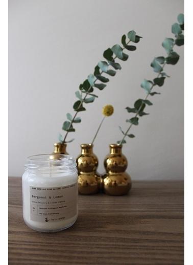 Lily's Candles Bergamut & Limon Doğal  Mum Beyaz